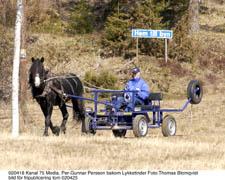 Motion i naturen. En tung så kallad Pullertvagn och långa skogsturer har byggt upp Lykketinders styrka.Foto: Thomas Blomqvist