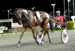 Cyber Lane följde på onsdagen upp segern i Svenskt Travderby på ett imponerande sätt.  Foto av LARS JAKOBSSON