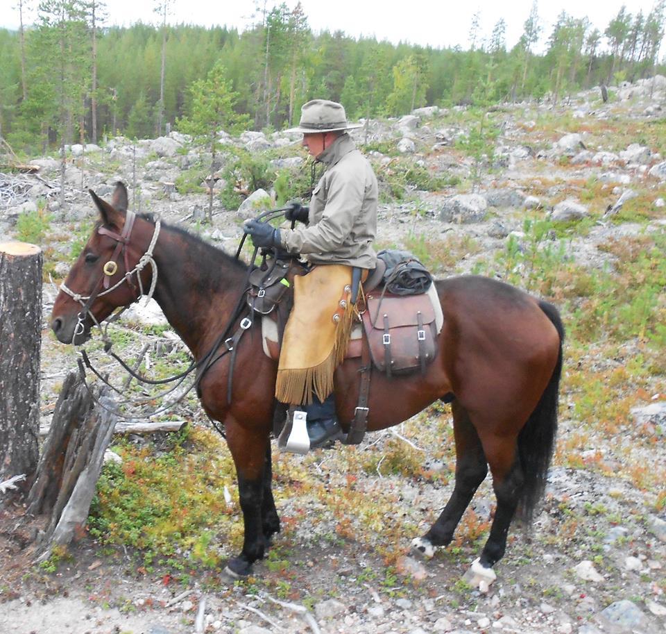 Så här är vi inte vana att se Örjan Kihlström för det är som kusk han nu har tagit 300 segrar med hästar från Travkompaniets stall. Foto; A.Lindblom