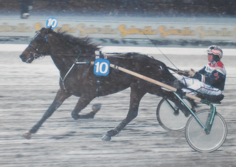 Så här började det. Travkompaniets allra första seger, Calvin Capar och Örjan Kihlström den 27 februari 2002.