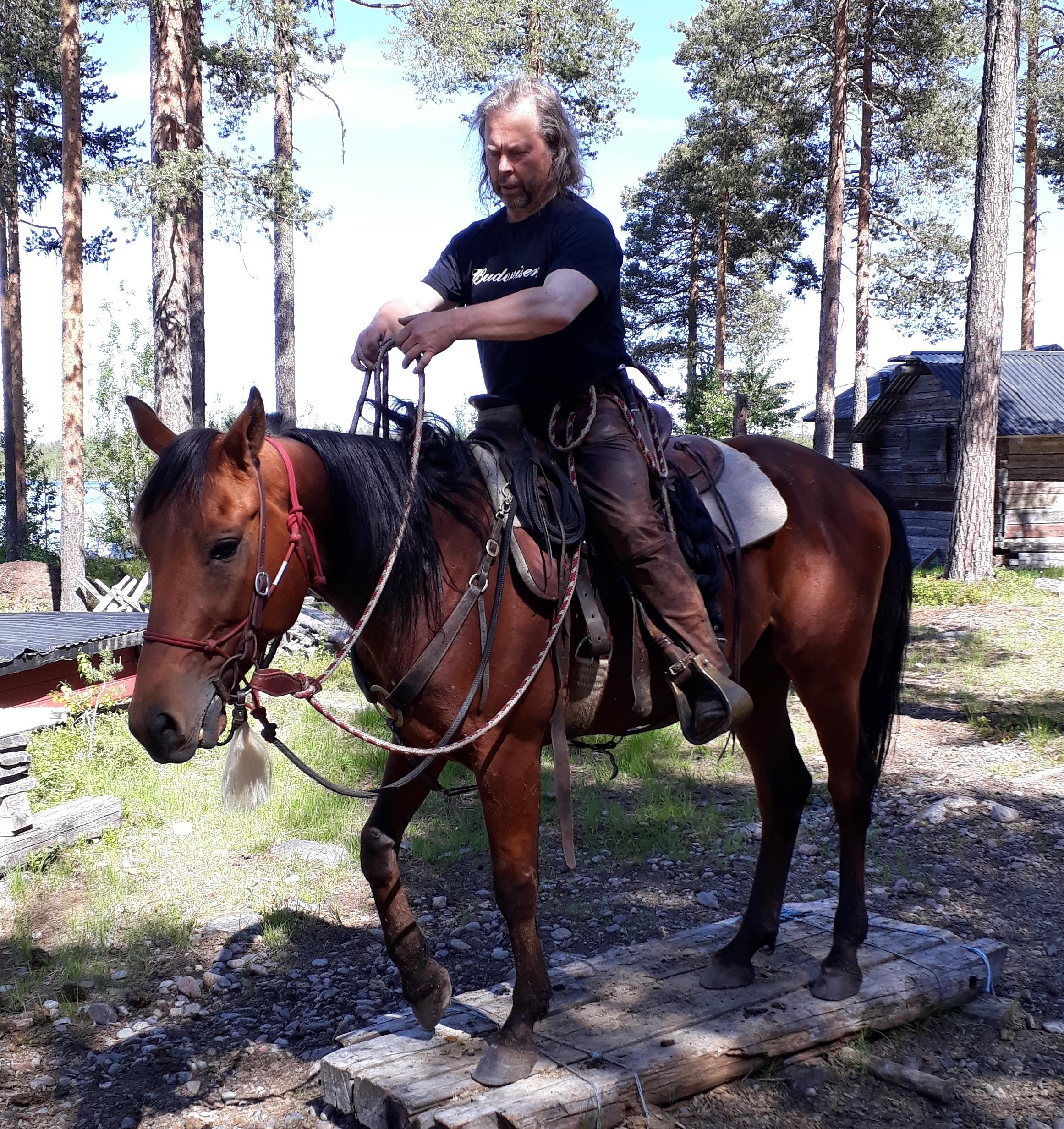 Före detta Travkompanihästen Utopi med Rikard Öhman på Udda Äventyr. Foto; A.Lindblom