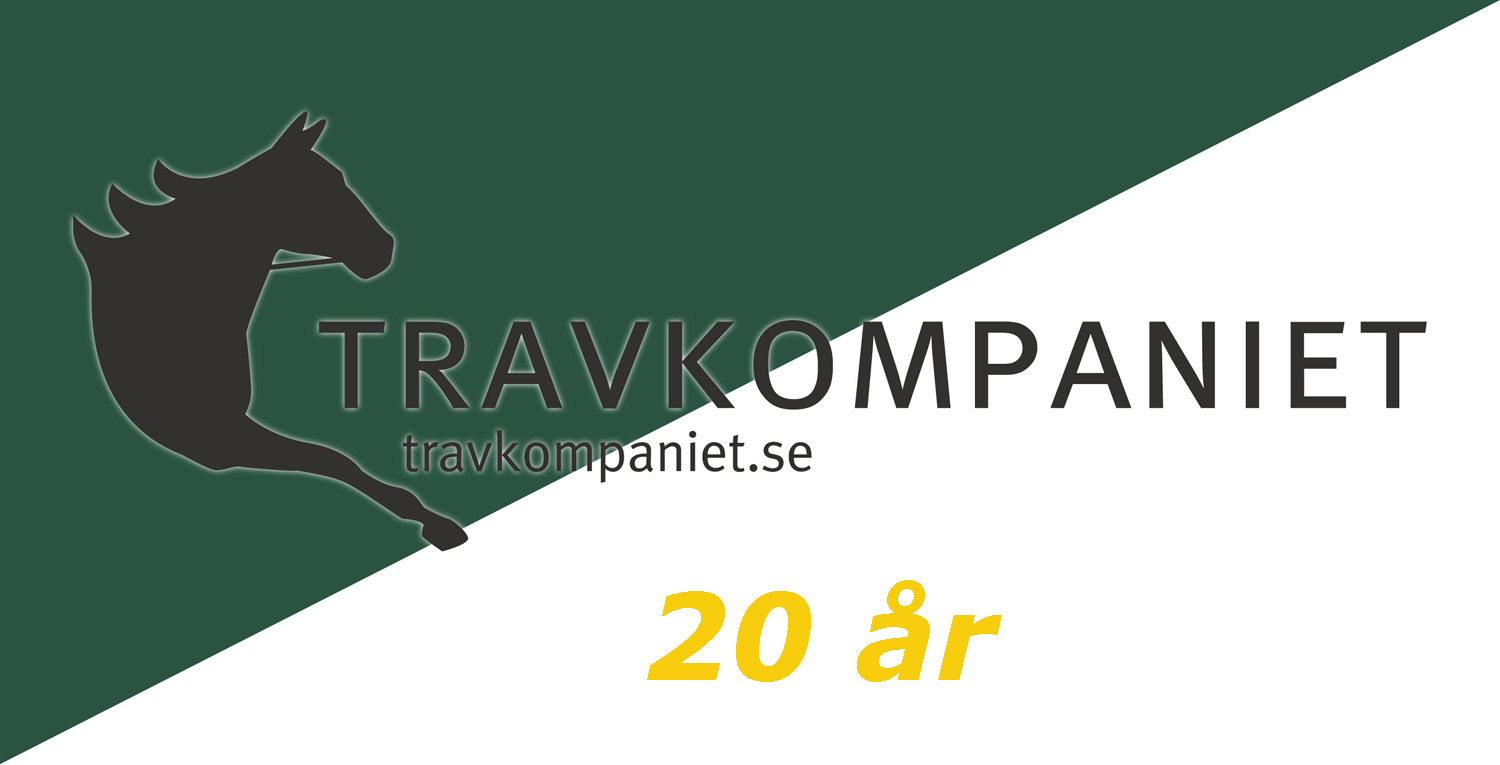 Travkomp vimpel low (kopia)