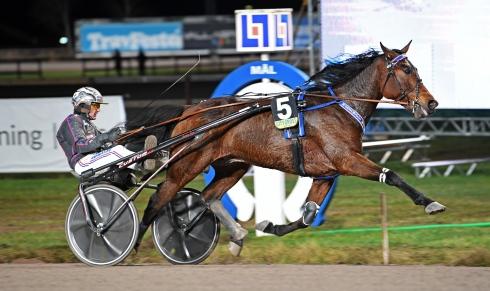 Ulf Ohlsson har två raka segrar tillsammans med Marschall Match som startar i V75-7.Foto av Malin Albinsson TR Bild