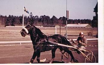 52 år sedan. 1963 Gävletravet. Hästen heter Viscount och undertecknad i vagnen..